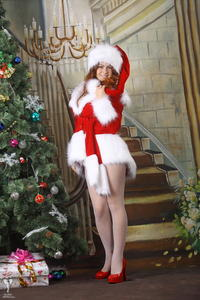 http://img147.imagevenue.com/loc345/th_531117826_silver_angels_Sandrinya_I_Christmas_1_024_123_345lo.jpg